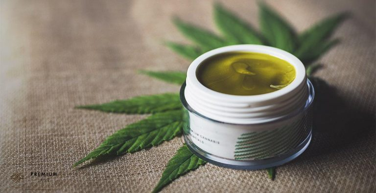 The Best of CBD Salves that Can Be Used as Pain Relief