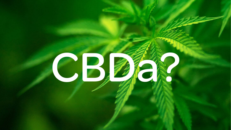 How CBDA Differs Than CBD? What Are Its Potential Health Benefits?